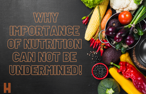 Why Importance of Nutrition Cannot Be Undermined